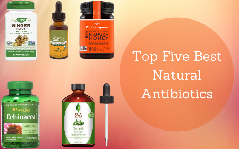 Top Five Best Natural Antibiotics To Your Rescue.